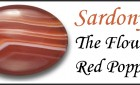Sardonyx – The Flower Red Poppy