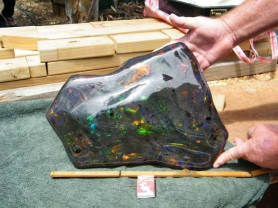 largest Opal in the world